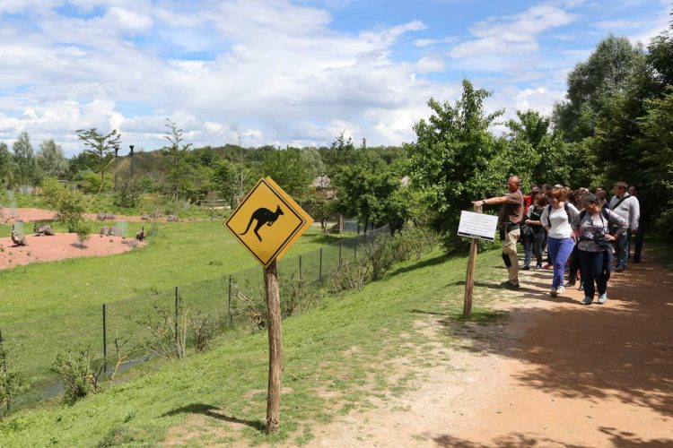 Visite guidée pour les groupes bush autralien
